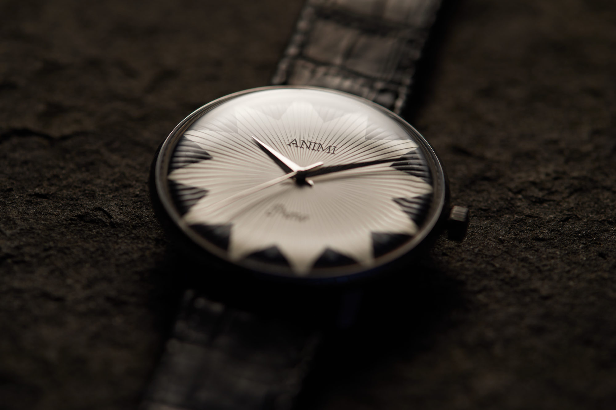 Animi Watches